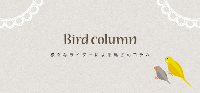 愛鳥家・研究家・イラストレーターなどのコラム
