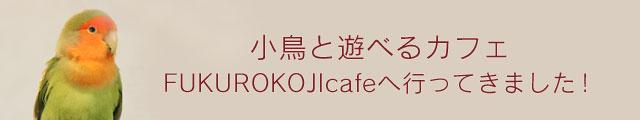 鳥カフェリポート vol.001 Fukurokojicafe