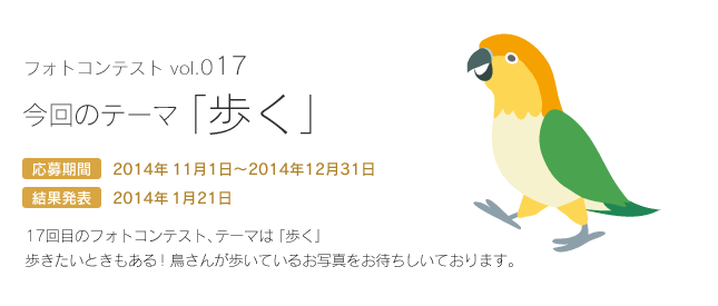 鳥フォトコンテストvol.017 テーマ「歩く」結果発表