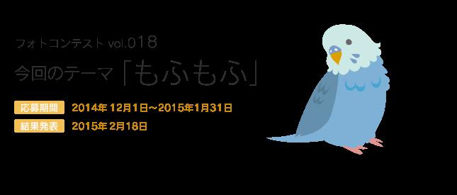 鳥フォトコンテストvol.018 テーマ「もふもふ」結果発表