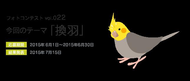 鳥フォトコンテストvol.022 テーマ「換羽」結果発表