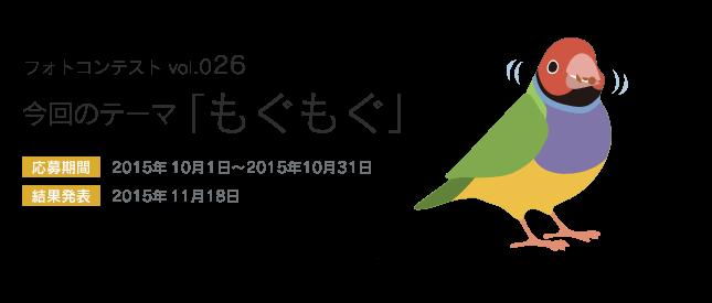 鳥フォトコンテストvol.026 テーマ「もぐもぐ」結果発表