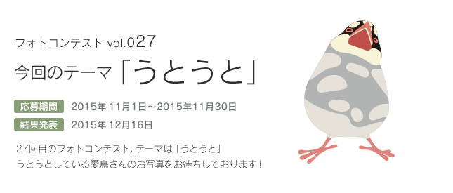 鳥フォトコンテストvol.027 テーマ「うとうと」結果発表