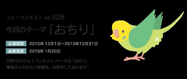 鳥フォトコンテストvol.028 テーマ「おちり」結果発表