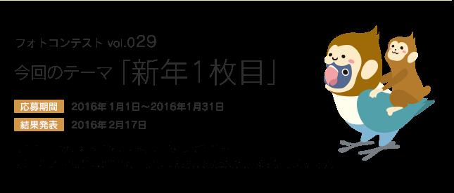 鳥フォトコンテストvol.029 テーマ「新年1枚目」結果発表