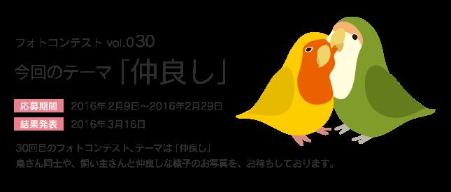 鳥フォトコンテストvol.030 テーマ「仲良し」結果発表