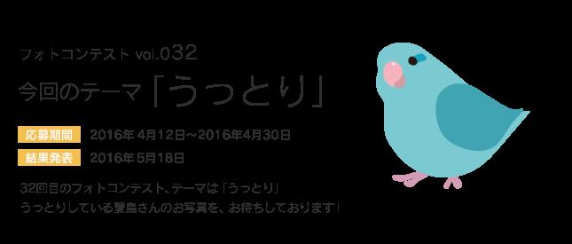 鳥フォトコンテストvol.032 テーマ「うっとり」結果発表