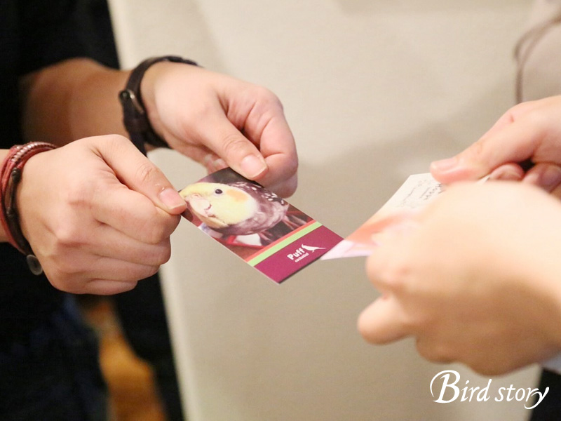 愛鳥家さん交流会 ことりカフェ×Birdstory