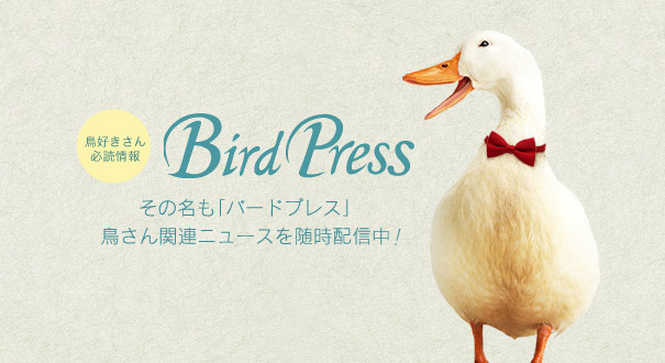 Birdpressバードプレス 鳥ニュース