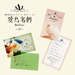 愛鳥名刺プロジェクト!