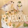 第1回愛鳥家交流会を開催しました♪
