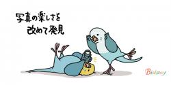 おとちゃん式鳥の撮り方の講座に参加。