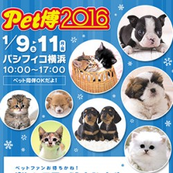 Pet博2016 in 横浜に出展します♪