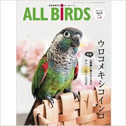 愛鳥家さん向け専門雑誌「オールバード」でカナリアさんのお写真募集中!
