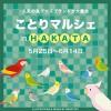 東急ハンズ博多店「ことりマルシェ」開催!